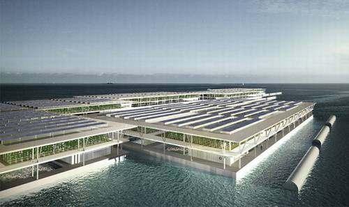 水上漂浮农场—铝板厂家再创奇迹 -第4张